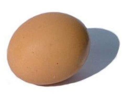 Egg drop project paper